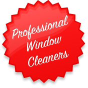 Proffesional Windows Cleander